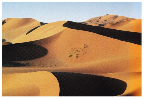 Алжир Сахара