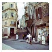 Алжир семьи