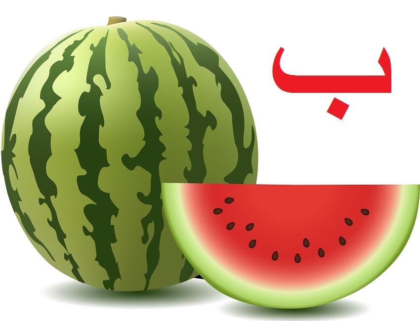 Арабский язык Для начинающих