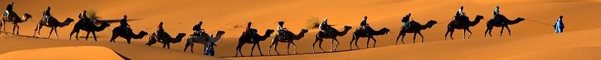 Арабский язык. Фразы приветствия
