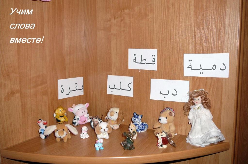 Учить арабский язык. Слова